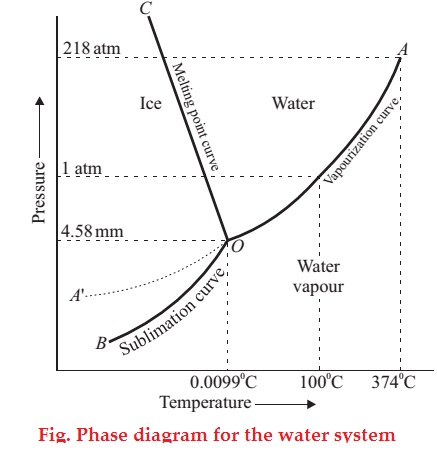 Phase diagram for the water system